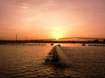 Coucher du soleil au-dessus d'étang de crevette Images stock