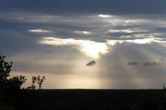 Coucher du soleil au-dessus d'Addo Elephant National Park Photo stock