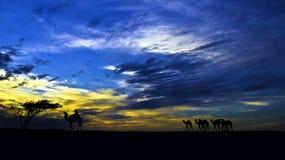 Coucher du soleil au-dessus d'un désert Photo stock