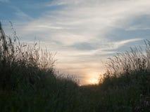 Coucher du soleil au-dessus d'un pré dehors en Angleterre Photographie stock libre de droits