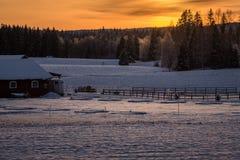Coucher du soleil au-dessus d'un varmland neigeux et froid, Suède photo stock