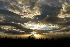 Coucher du soleil au-dessus d'une forêt photographie stock libre de droits