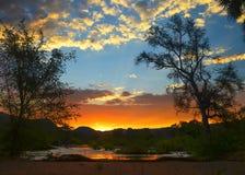 Coucher du soleil au-dessus d'une rivière avec des arbres images libres de droits