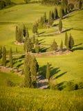 Coucher du soleil au-dessus d'une ruelle de cyprès d'enroulement en Toscane images stock