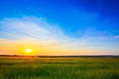Coucher du soleil au-dessus de champ rural de campagne photographie stock libre de droits