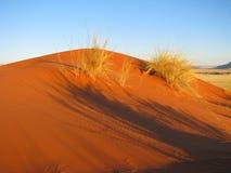 Coucher du soleil au-dessus de dune rouge d'Elim dans Sossusvlei, Namibie photo libre de droits