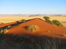 Coucher du soleil au-dessus de dune rouge d'Elim dans Sossusvlei, Namibie photos stock