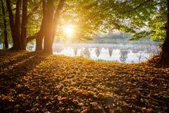 Coucher du soleil au-dessus de l'étang Image libre de droits