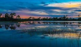 Coucher du soleil au-dessus de l'étang marécageux Image libre de droits
