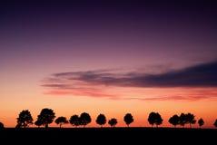 Coucher du soleil au-dessus de l'allée des arbres Image libre de droits