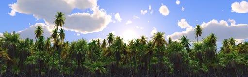 Coucher du soleil au-dessus de l'eau Photos libres de droits