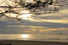 Coucher du soleil au-dessus de la mer avec une vue au pin Image stock