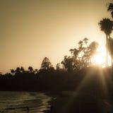 Coucher du soleil au-dessus de la plage Pacifique de côte ouest avec des arbres Image libre de droits