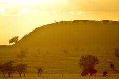 Coucher du soleil au-dessus de la savane Images libres de droits