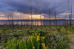 Coucher du soleil au-dessus de lac Yellowstone photographie stock libre de droits