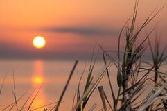 Coucher du soleil au-dessus de marais Image libre de droits