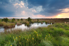 Coucher du soleil au-dessus de marais en été Photos stock