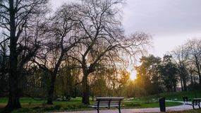 Coucher du soleil au-dessus de Parc Barbieux à Roubaix, France une soirée vive d'hiver Photos libres de droits