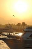 Coucher du soleil au-dessus de port en Egypte Image libre de droits