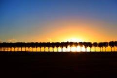 Coucher du soleil au-dessus de route rayée par arbre de pays sur la colline Photographie stock