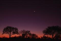 Coucher du soleil au-dessus de Sabi Photos stock