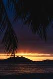 Coucher du soleil au-dessus de Sanya avec l'arbre de noix de coco encadrant le coucher du soleil image libre de droits