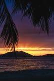 Coucher du soleil au-dessus de Sanya avec l'arbre de noix de coco encadrant le coucher du soleil Photos stock