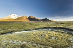 Coucher du soleil au-dessus de volcan Sajama en Bolivie avec la rivière image libre de droits
