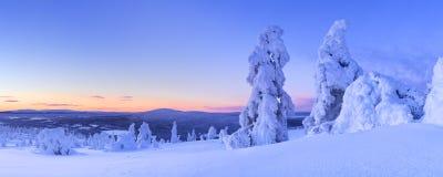 Coucher du soleil au-dessus des arbres congelés sur une montagne, Laponie finlandaise Photo stock