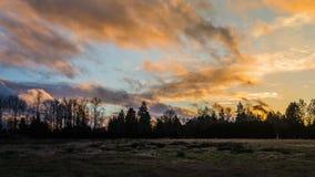 Coucher du soleil au-dessus des champs et des forêts Image stock