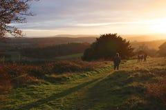 Coucher du soleil au-dessus des collines de Surrey au coin de Newlands Image stock