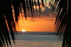 Coucher du soleil au-dessus des Îles Maurice avec des paumes encadrant le coucher du soleil Images stock