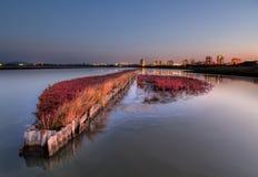 Coucher du soleil au-dessus des marais de sel - aménagez en parc au coucher du soleil images stock