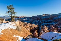 Coucher du soleil au-dessus des pentes de canyon couvertes dans la neige, Bryce Canyon National Images libres de droits