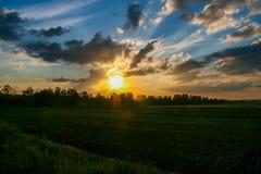 Coucher du soleil au-dessus des potagers dans la steppe de Tavri Photo libre de droits