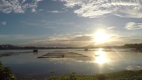 Coucher du soleil au-dessus des structures d'aquiculture et des nénuphars en bambou au milieu du lac banque de vidéos