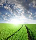 Coucher du soleil au-dessus des zones Photo libre de droits