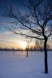 Coucher du soleil au-dessus du champ. Images libres de droits