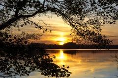 Coucher du soleil au-dessus du lac, encadré par une branche dans une voûte naturelle image libre de droits