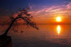 Coucher du soleil au lac - lac Garda - l'Italie Image libre de droits