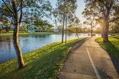 Coucher du soleil au parc Image stock
