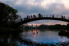 Coucher du soleil au parc d'Ibirapuera Photo stock