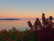 Coucher du soleil au rivage de Sidney photographie stock libre de droits