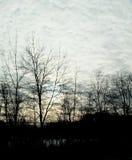 Coucher du soleil avec des arbres d'hiver et des nuages uniques photographie stock