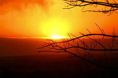 Coucher du soleil avec des branches d'arbre Image libre de droits