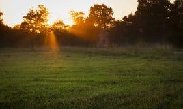 Coucher du soleil avec la lumière volumétrique Image libre de droits