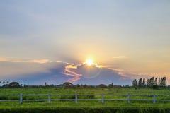 Coucher du soleil avec le champ vert Photos stock