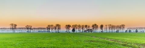 Coucher du soleil avec le secteur néerlandais rural photo stock
