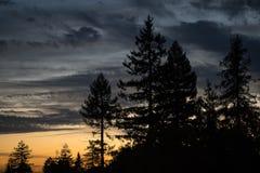 Coucher du soleil avec les arbres silhouettés Image libre de droits