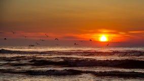 Coucher du soleil Beau coucher du soleil la Mer Noire Coucher du soleil de mer d'or Image libre de droits